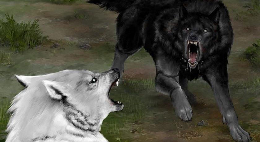Carcharoth contra Huan